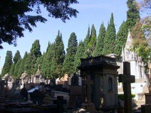 brazil-cemetery
