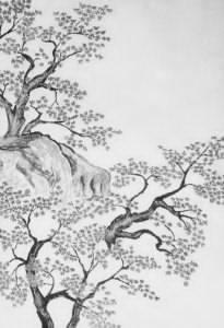 sawako-taikan-black-white-1-1